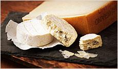 신선한 치즈 이미지